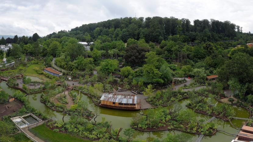 Pantanal im Zoo Zürich.