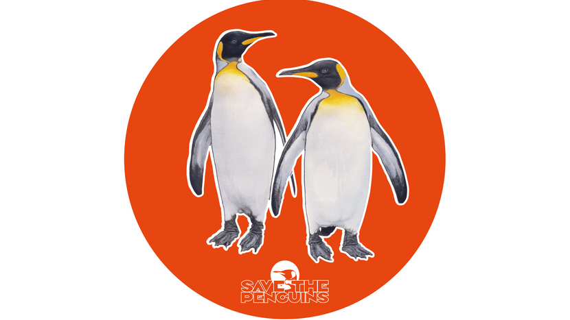 "Scan-Grafik Königspinguin für die App ""Save the Penguins"""