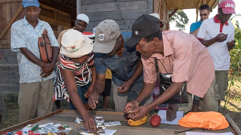 Mitglieder der Kooperative Coprocavol testen die fertige Schoggi.