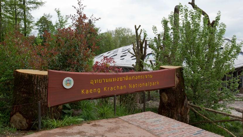 Szenografie im Kaeng Krachan Elefantenpark.