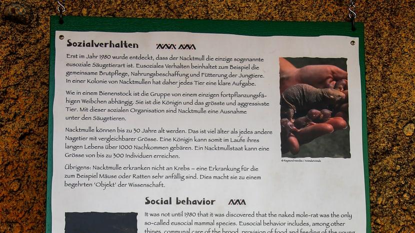 Schild bei der Nacktmullanlage im Lewa Giraffenhaus.