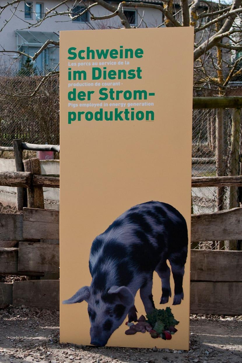 Ausstellung im Zoolino des Zoo Zürich.