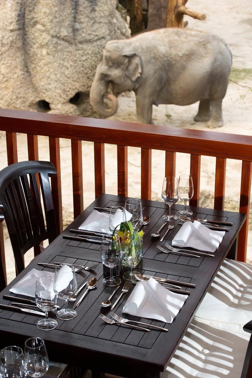 Blick aus der Thailodge im Kaeng Krachan Elefantenpark.