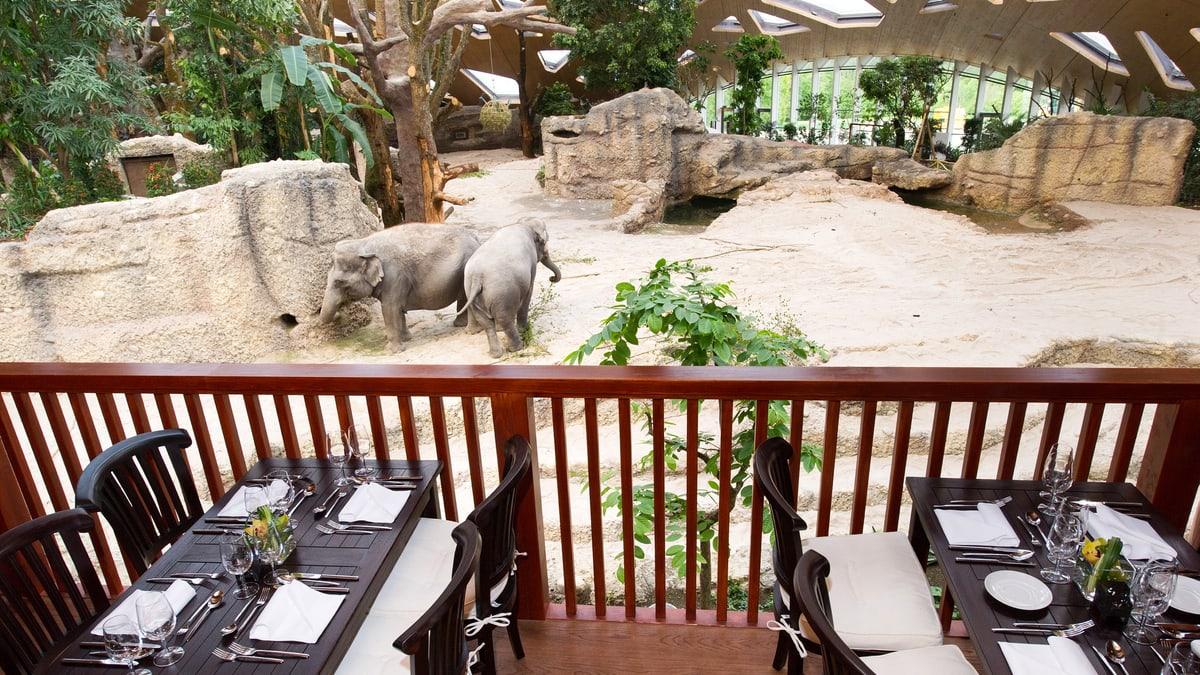 Thailodge Zoo Zürich